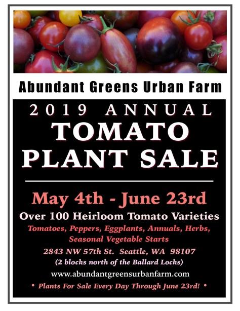 *2019 Tomato Plants For Sale jpeg