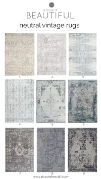 Neutral Vintage Area Rugs - A Burst of Beautiful