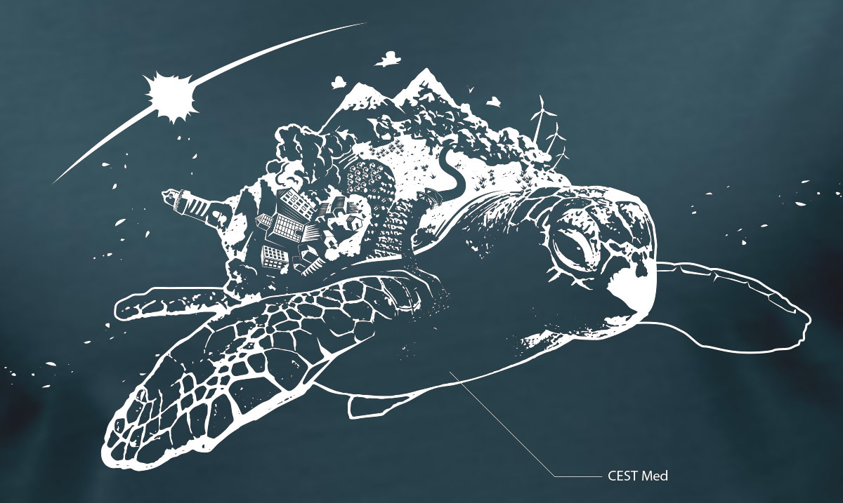 abys - da lyon -illustration turtle world happy