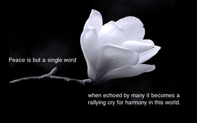 Peace is but a single word