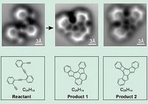 atom life