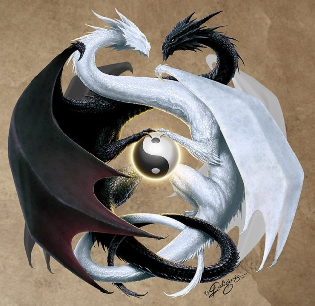 Ying Yang double_dragon_by_deligaris-d3cyy91