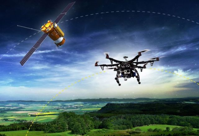 tree drones
