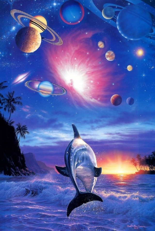 Dolphins Galactic
