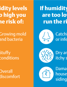 Infographic showing the risks of humidity levels that are too high and also at home what you need to know this winter rh ac heatingconnect