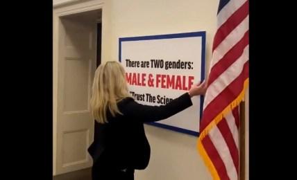 kongresmanka transgender