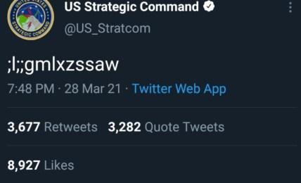 americká armáda nesara