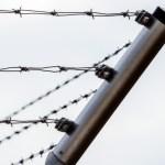 lidská práva vězení
