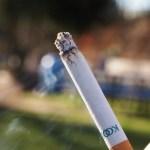 cigarety drogy