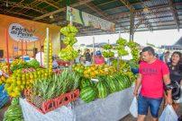 Visita ao CEASA e feira do peixe (Fotos Assis Lima) (16)