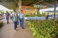 Visita ao CEASA e feira do peixe (Fotos Assis Lima) (19)