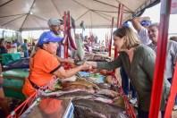 Visita ao feira do peixe no panorama (Fotos Assis Lima) (2)