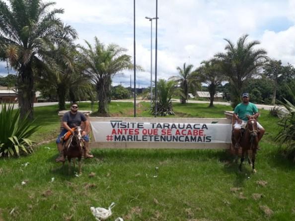 cavalo (1)