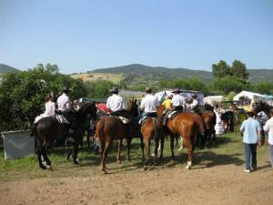 Fiesta in Spain, Andalusia