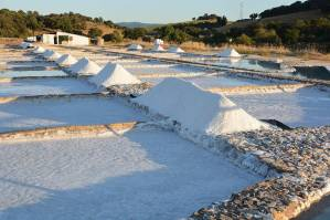 With the students of spanish during a cultural excursion, we visit the saltworks of Prado del Rey.