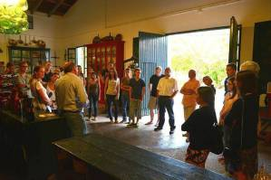 Wine tasting session at a traditional winery for red and white wine with explanations for the language students by the owner