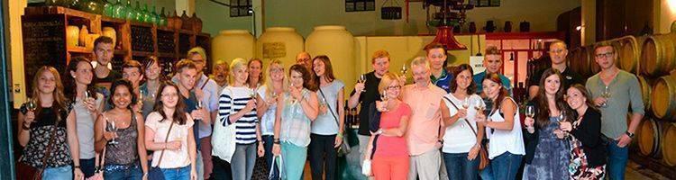 Wine tasting session Prado del Rey