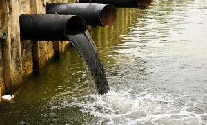Aquatic Resources and Pollution Management