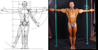 Hombre de vitruvio- Anatomia-heroica-comic-dibujo-ilustracion-fotografia-carlos-diez-fotografo-pin-up-masculino
