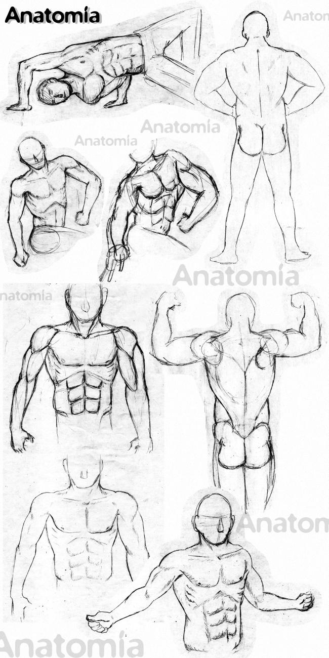pastilla-noticia-curso-dibujo-anatomia-sabados-academiac10-madrid
