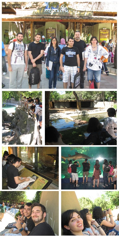 Noticia zoo 1