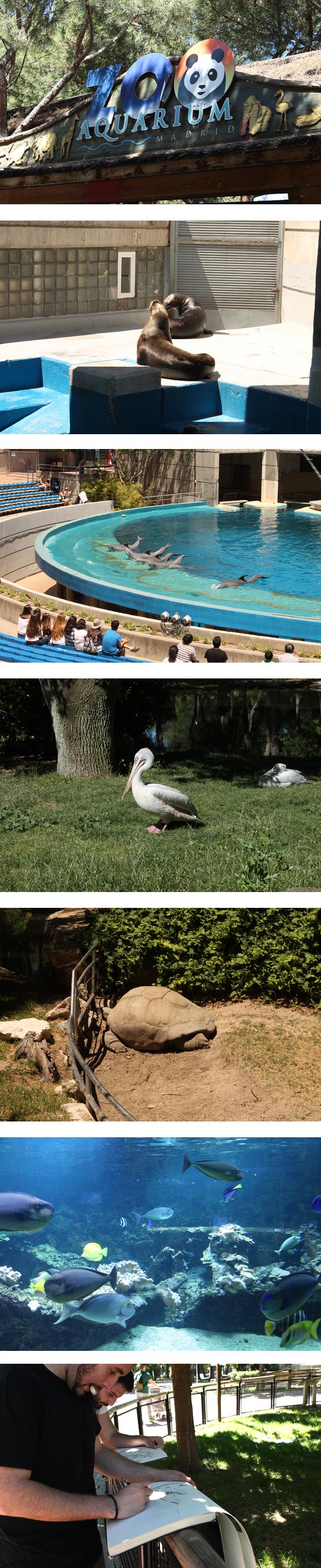 visita_zoo_madrid_alumnos_curso_master_artc10_ilustracion_mariano_saura_ana_pomares