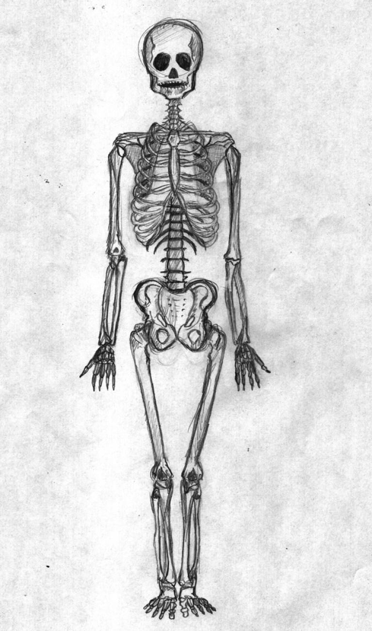 Curso de cómic en Academia C10: anatomía artística