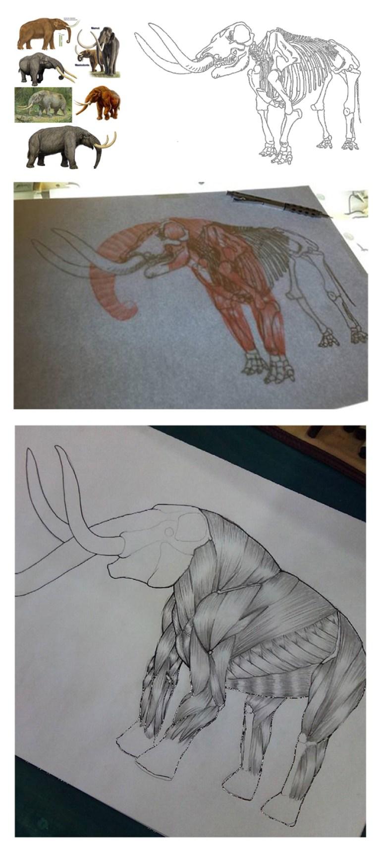 curso-ilustracion-dibujo-masterc10-academiac10-madrid-montaje-mastodonte