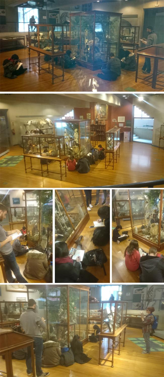visita-alumnos-masterc10-museo-ciencias-naturales-dibujo-ilustracion-madrid