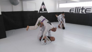 Jiu-jitsu - Alliance
