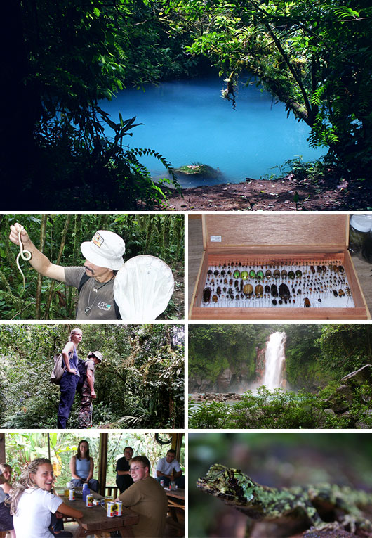 Volunteering in Tenorio Volcano National Park, Costa Rica