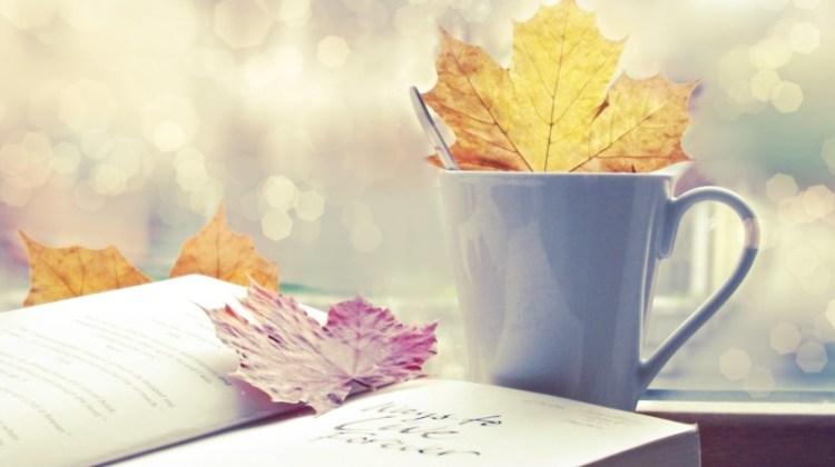 Contoh Essay Bahasa Inggris yang Baik dan Singkat
