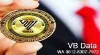 VB Data Investasi