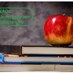naoc-undergraduate-scholarship