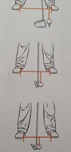 Posture type Leadbetter