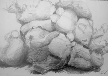 tekenkunst-academie-temse (36)