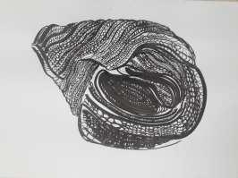 tekenkunst-academie-temse (54)