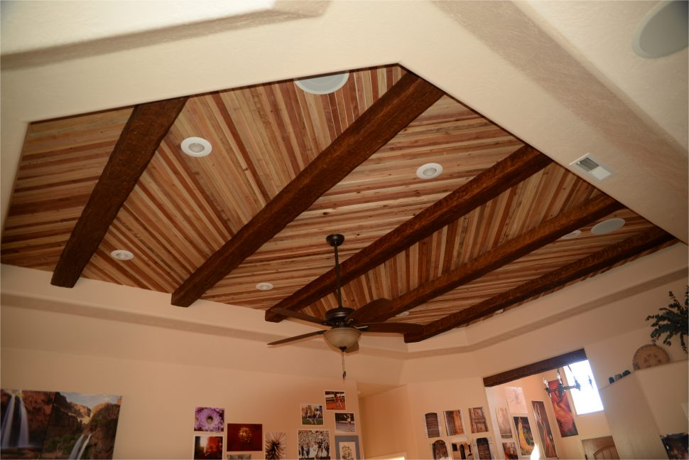 types-of-ceilings-elegant-home-design-fresh-vaulted-what-are-the-different-within-14-970x647.jpg