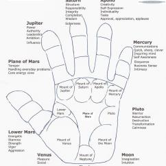 Palmistry Diagram Marriage Line What Is The Definition Of Tree Lifeline Palm Reading Foot Reflexology