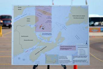 Une importante zone dans l'ouest du golfe du Saint-Laurent fait maintenant l'objet d'une restriction de vitesse jusqu'à la prochaine période de migration des baleines noires vers le sud. - Acadie Nouvelle: Jean-Marc Doiron