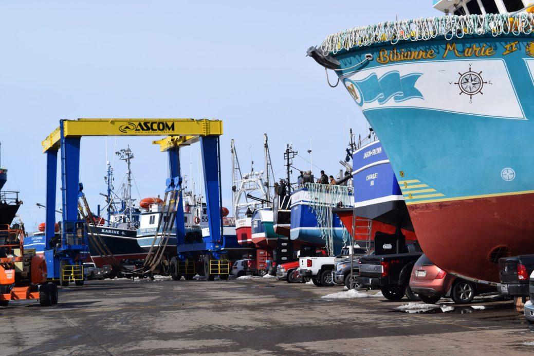 Le Centre des services maritimes de Shippagan bouillone d'activité. Acadie Nouvelle: David Caron
