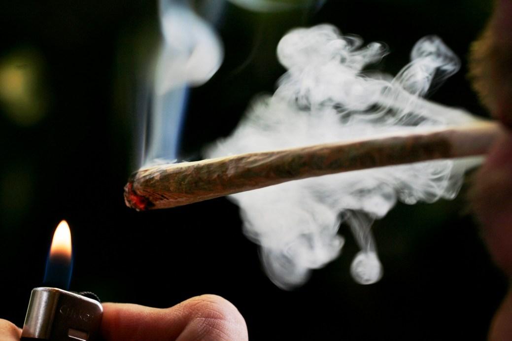 Le pot le moins cher vendu par Cannabis NB est celui de la marque Plain Packaging, à 8$ le gramme. - AP Photo: Peter Dejong