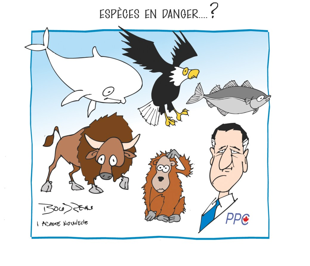 Caricature, 12 septembre 2019