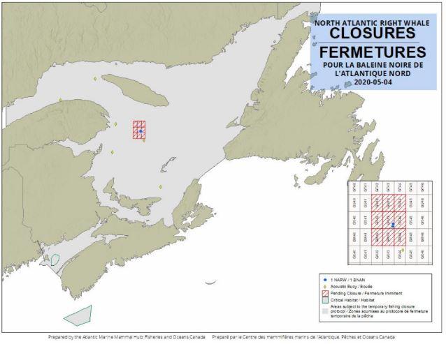 Des quadrilatères ont été fermées à la pêche au crabe des neiges dans le nord de la zone 12, dans le golfe du Saint-Laurent. - Gracieuseté: Pêches et Océans Canada