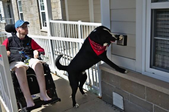 Le chien de Yannick, Scott, l'aide à ramasser des objets, à retirer des vêtement et à appuyer sur des boutons. - Acadie Nouvelle: Cédric Thévenin