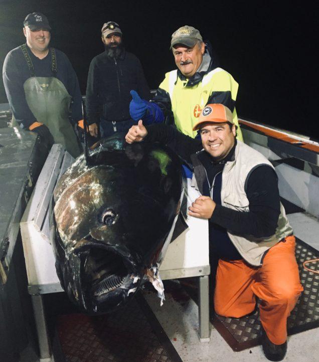 Donald Ward, le capitaine Raymond Lanteigne et Antonio McGraw avec, à l'avant-plan, Robert Noël quelques instants après avoir capturé un thon rouge au large de l'île Miscou, en septembre. - Gracieuseté