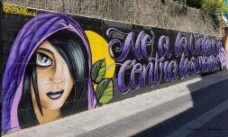 No a la violencia contra las mujeres - Engracia Navinés