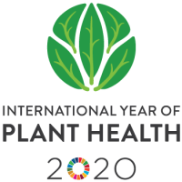 2020 - Ano Internacional da Sanidade Vegetal