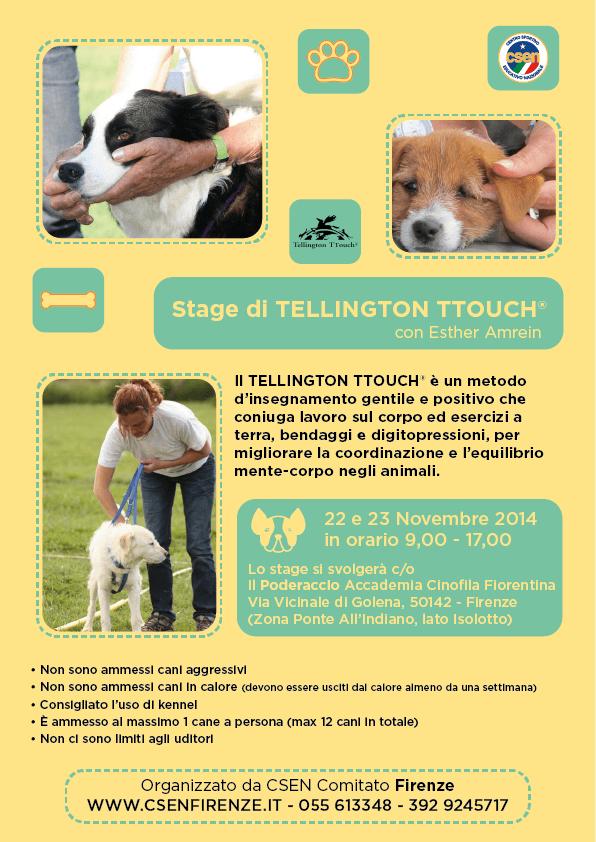 stage tellington-01