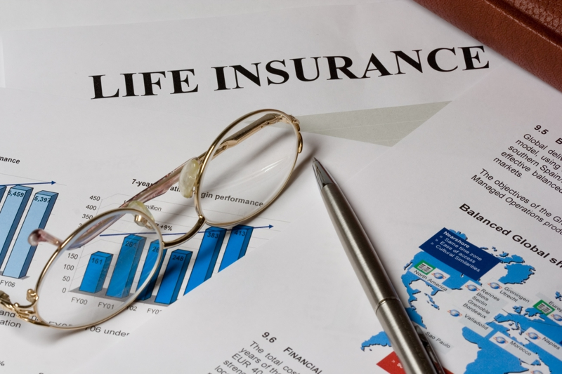 4 Jenis Polis Asuransi Jiwa Seumur Hidup & Penjelasannya